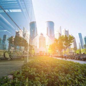 Industrial/ Commercial/ Municipal Vegetation Management